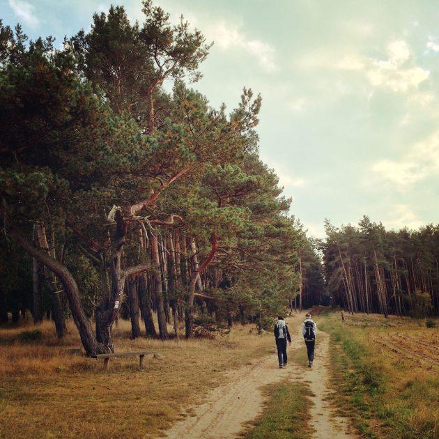 Durch die Wälder bei Rädigke wandern wir auf geschichtsträchtigem Boden