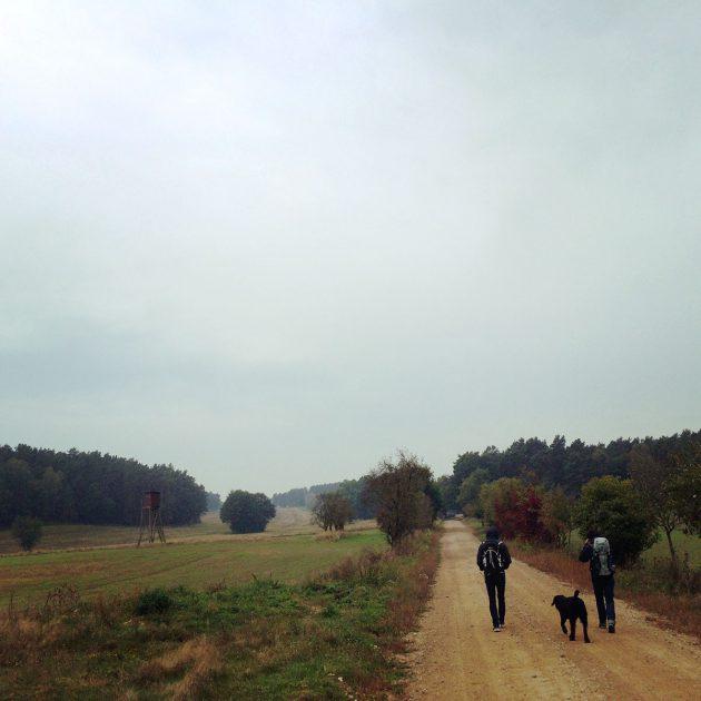 Trotz leichten Regens wandern wir weiter auf dem Burgenwanderweg im Hohen Fläming