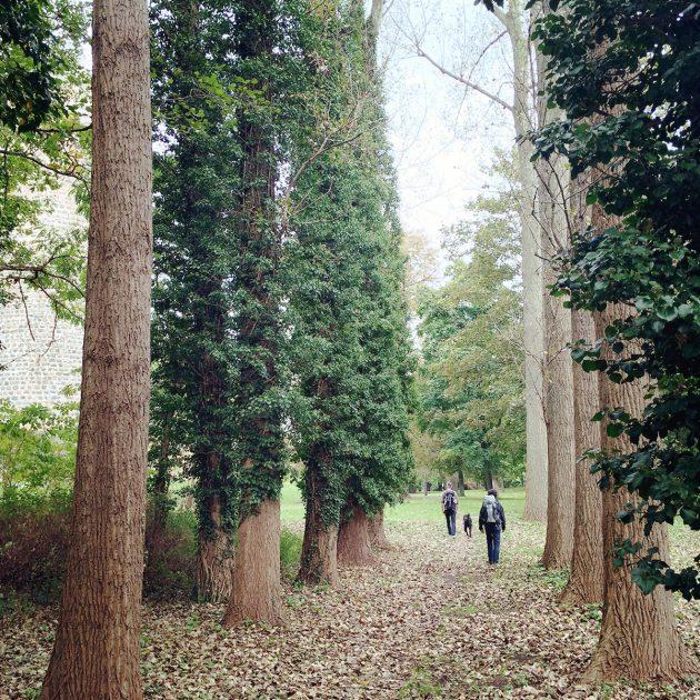 Bei weitem nicht so spektakulär wie der Park von Schloss Wiesenburg: der Garten der Bischofsresidenz Ziesar