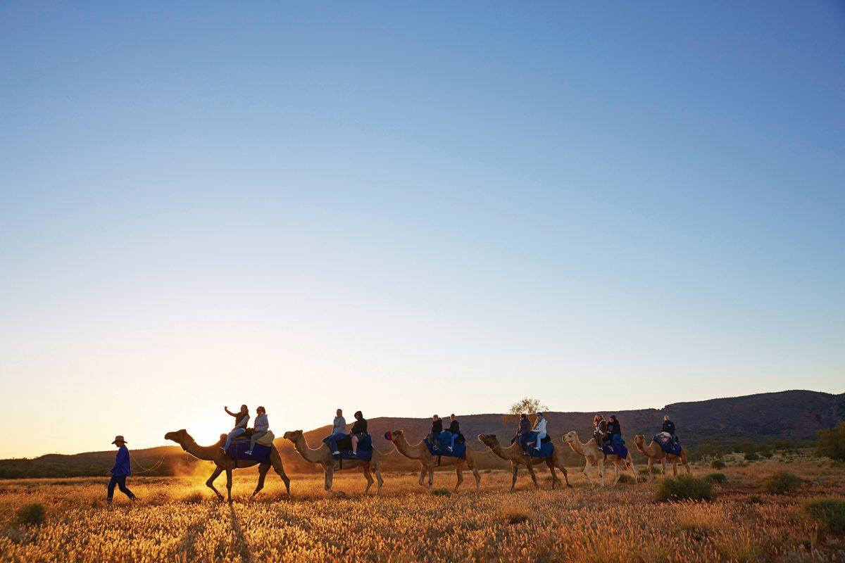 Camel Tour, Pyndan Camel Tracks – Australien