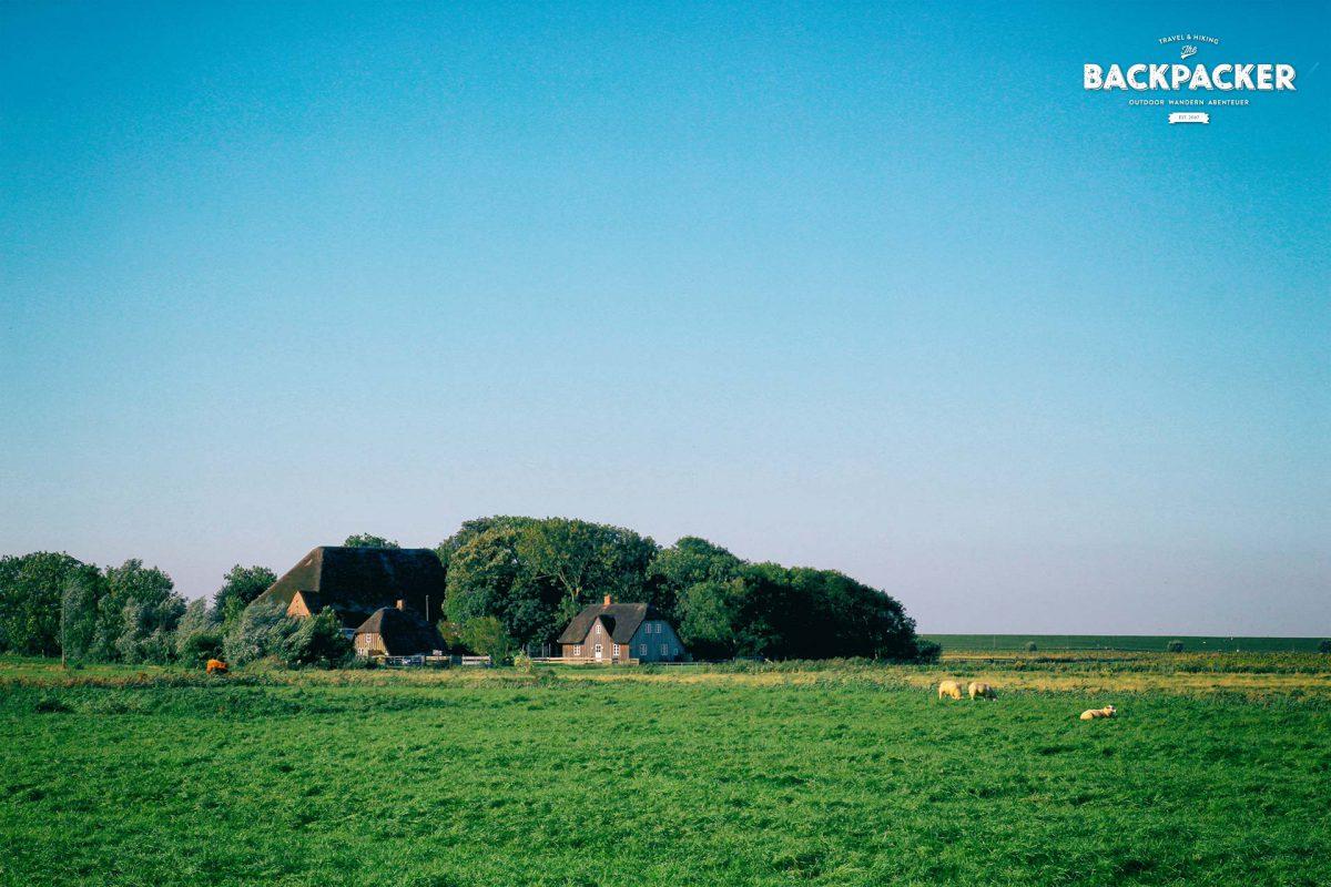 Westerhever ist durchzogen mit kleinen Bauernhöfen und Kammenaten.