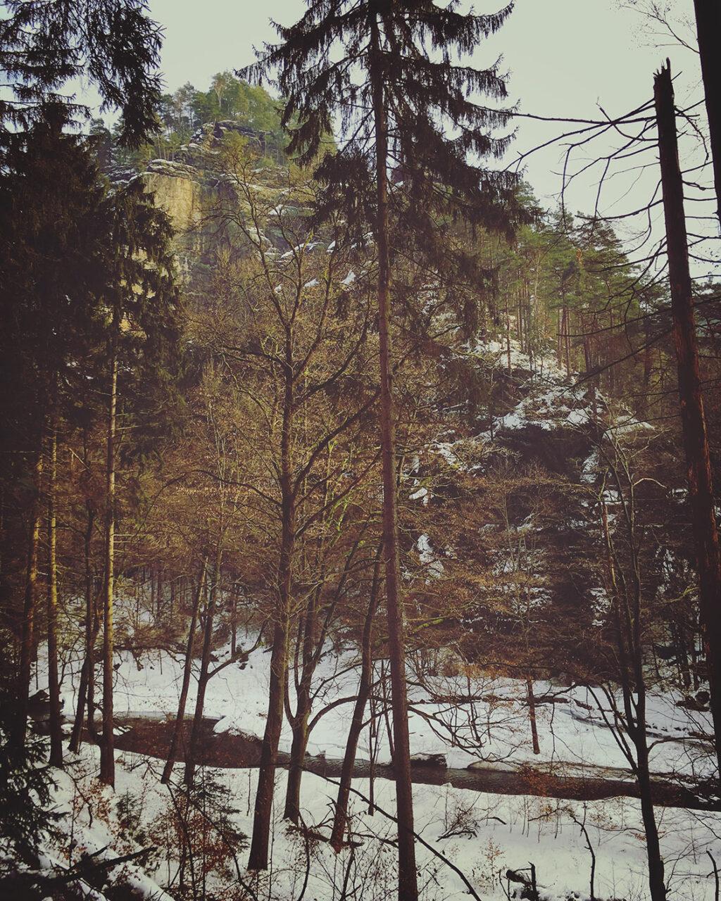 Noch ein schmaler Bach: die Polenz unter Schnee und Eis