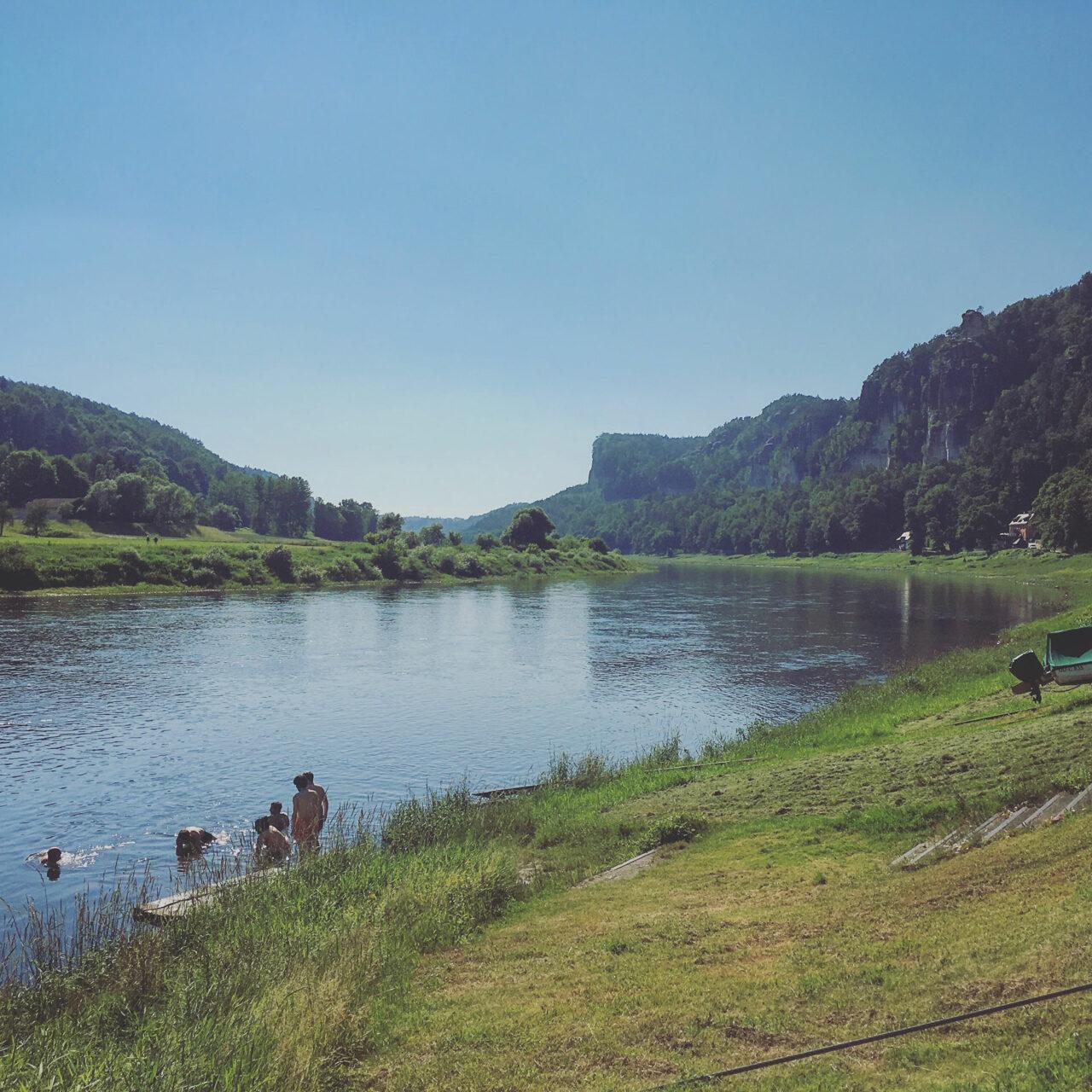 Sauber und ökologisch wertvoll: in der Elbe kann man seit einigen Jahren wieder bedenkenlos baden.