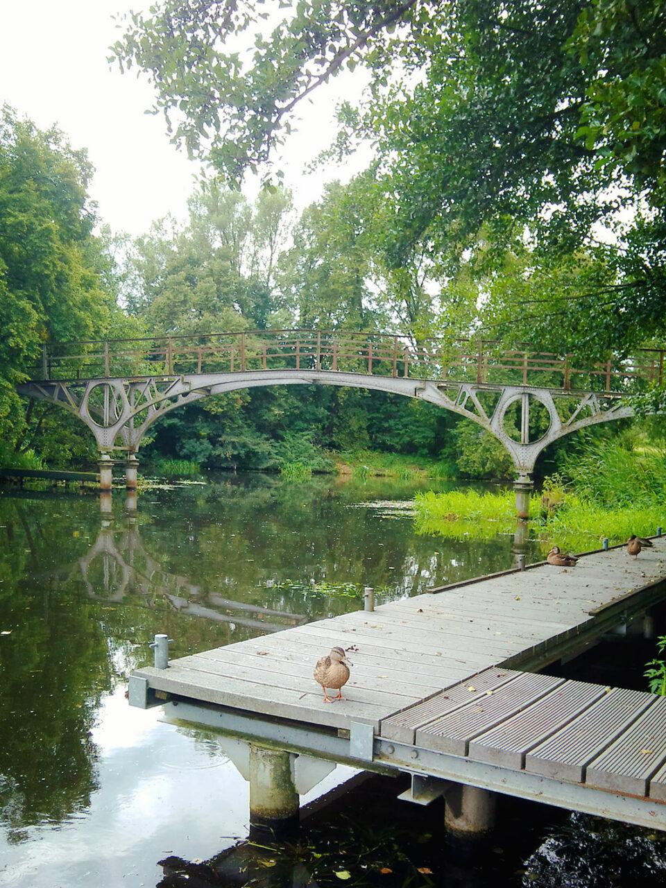 Die Teufelsbrücke am Finow-Kanal bei Eberswalde. Schaut so gar nicht teuflisch aus. Schon gar nicht mit Ente…