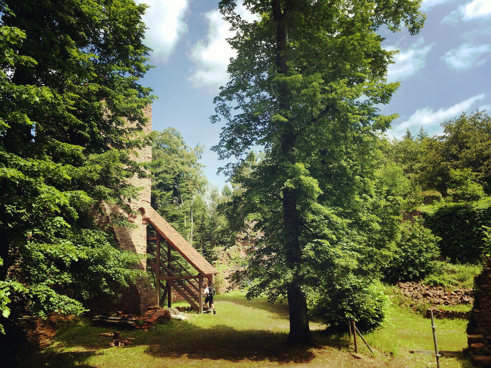 Auf der Burgruine Wildenstein