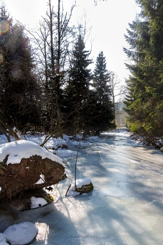 Ist der Fluß durch Schierke erst einmal zugefroren ist Schlittschuhlaufen nicht nur in der neu gebauten Arena möglich.