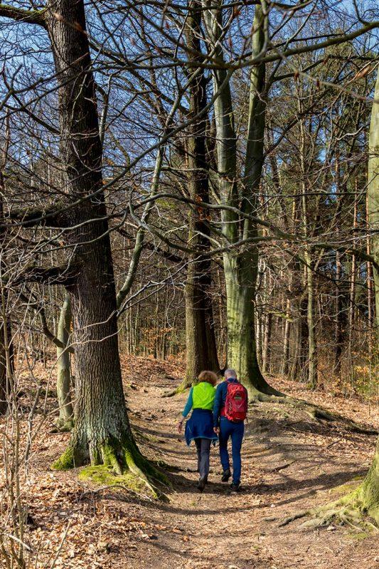 Am ersten Frühlingstag kann man noch keine grünen Bäume erwarten. Dafür springen Wanderer sehr farbenfroh ins Auge.
