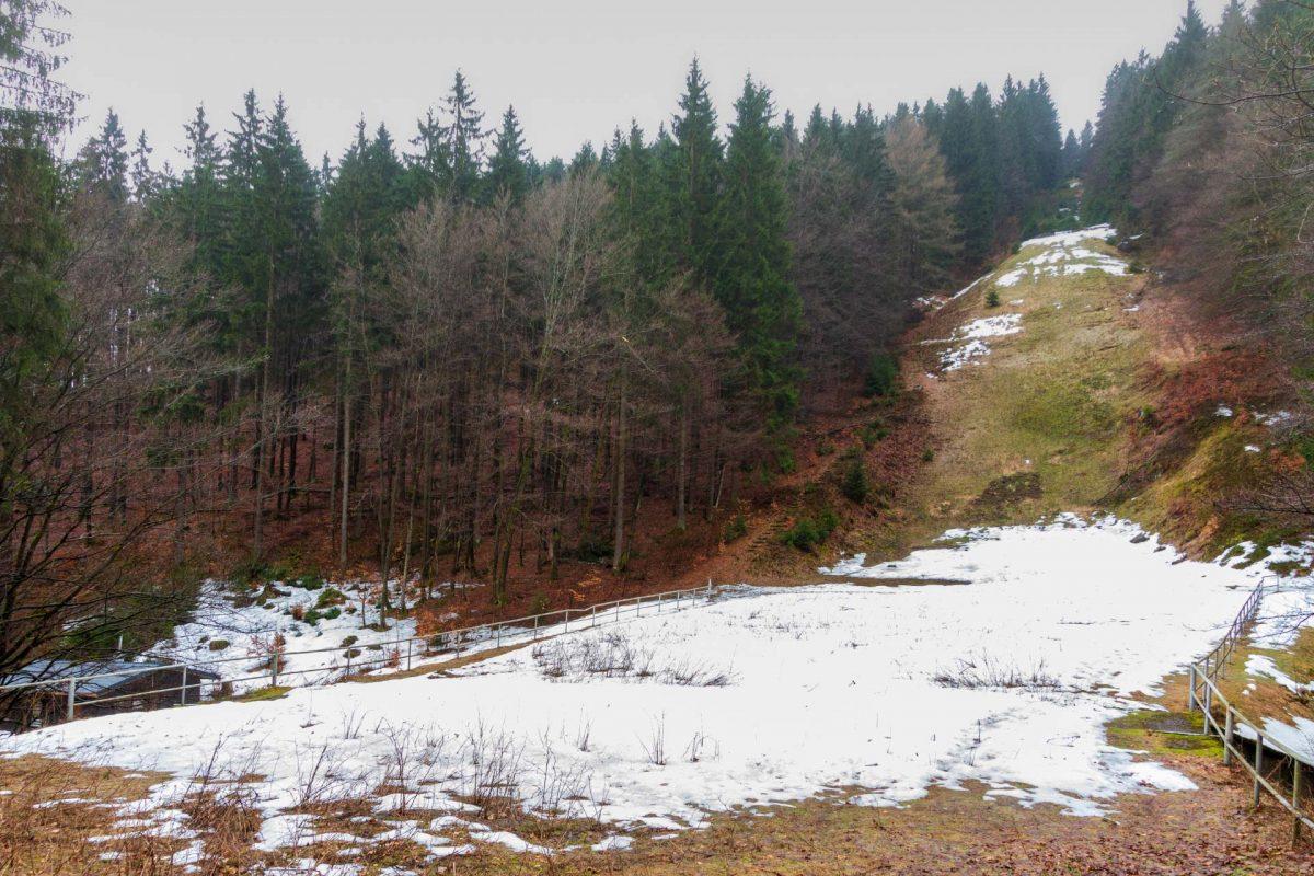 Die alte Sprungschanze im Vessertal war eine von wenigen Naturschanzen. Weitenrekord hielt zuletzt Frank Ludwig (2002) mit 99 Meter. Kurz darauf wurde der Betrieb eingestellt.
