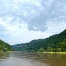 Die Elbe bei Hrensko
