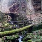 Hinauf zur Burg Hohnstein