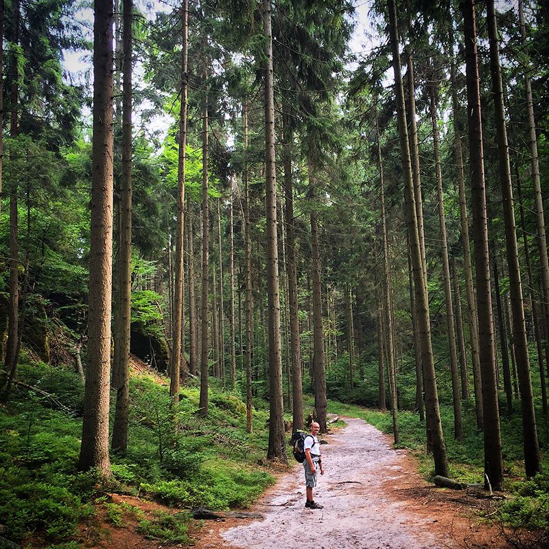 Die Natur kennt keine Grenzen. Ihr Übergang ist fließend. Ich könnte an dieser Stelle nicht sagen, ob wir noch in Tschechien sind oder nicht, ob das noch Lausitzer Gebirge oder schon Böhmische Schweiz ist. Verwirrend.