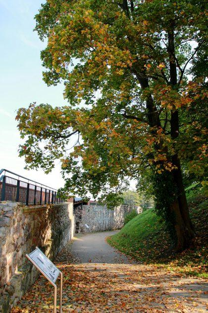 Herbstlicher Gang entlang der gut erhaltenen Burgmauer