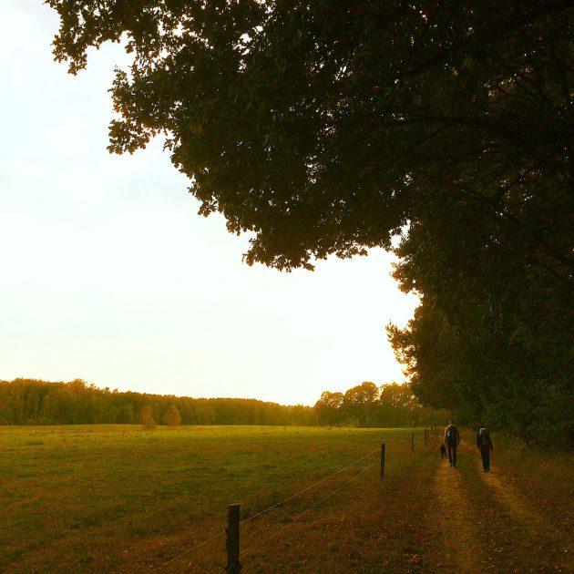 Im Licht der Abendsonne dem Ziel entgegen