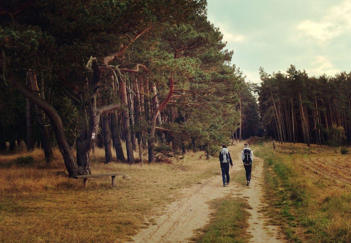 Der Herbst im Brandenburger Land, im Hohen Fläming – Zeit zu wandern!