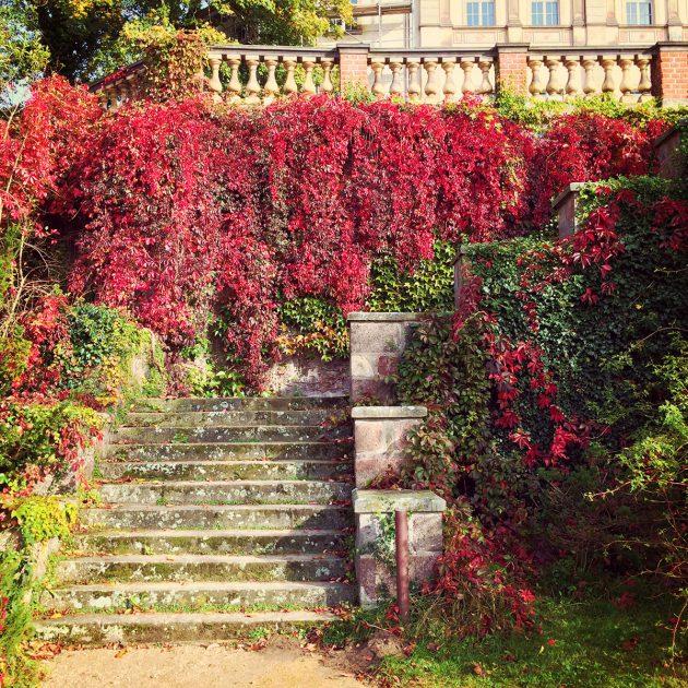 Herbstfärbung am Schloss Wiesenburg im Hohen Fläming