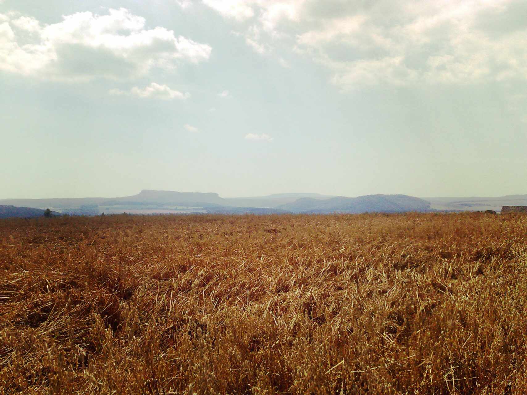 Der Weg heißt nicht umsonst Panoramaweg. Immer wieder präsentieren sich die umliegenden Berge und ergeben ein fantastisches ... na wer weiß es? ... richtig! ... Panorama.