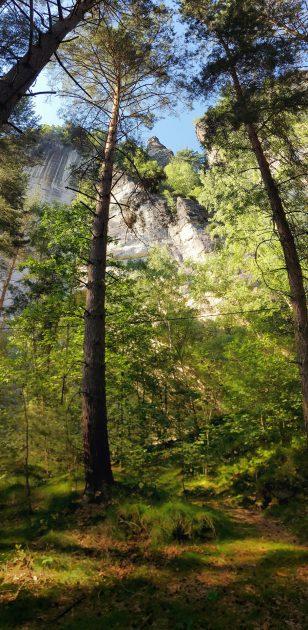 Der zum Teil unbekannte Trampelpfad führt schnurstracks entlang der ehemaligen Sandsteinbrüche.
