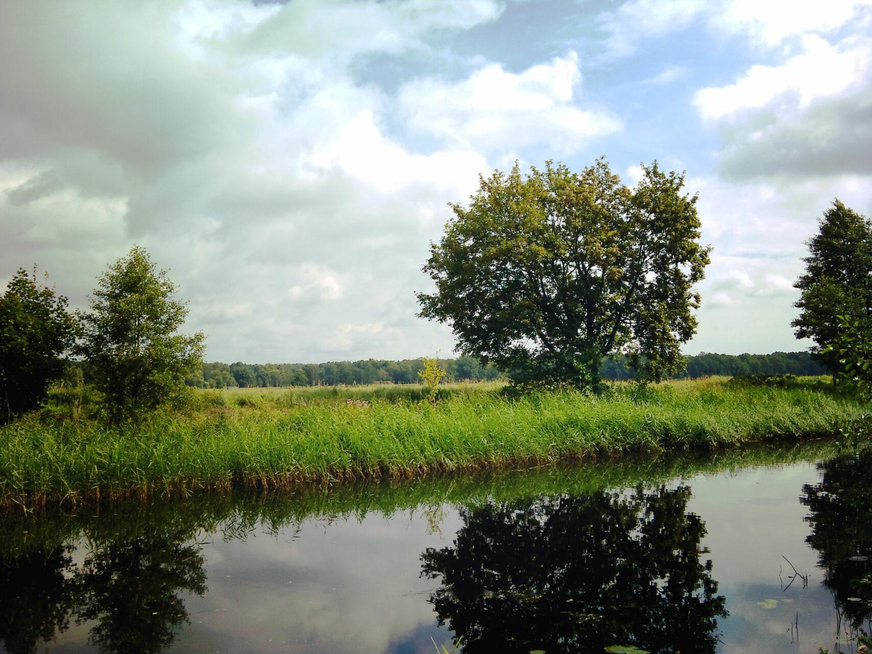 A bissel Wasser, ein oder zwei Bäume, fertig ist das romantische Bild der Barnimer Landschaft. Hätte CDF nicht besser hinbekommen...
