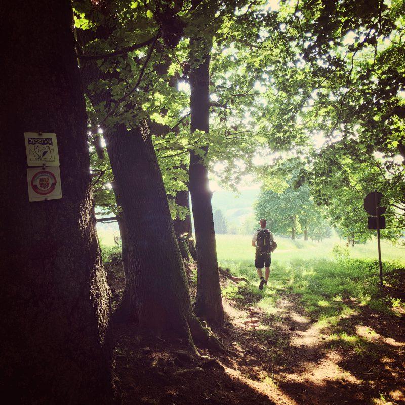 Der Spessartweg 1 führt direkt von Lohr am Main an unser erstes Tagesziel: Rothenbuch.