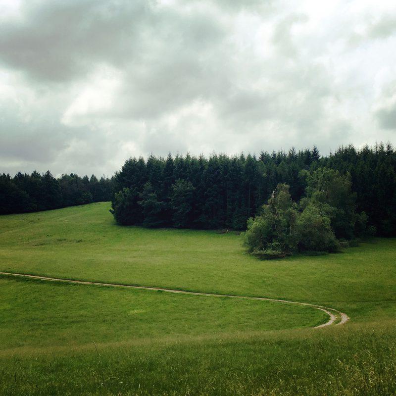 Dichte Wälder und lichte Wiesen. Kein Wunder, dass im Spessart das Räuberwesen einmal Hochkonjunktur hatte.