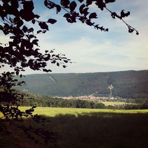 Direkt am Main, im Tal zwischen den Bergen des Spessarts und des Odenwalds, liegt Freudenberg und damit das Ziel unserer viertägigen Wanderung.