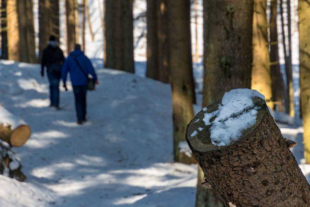 Mancherorts ist der Weg ganz schön vereist, aber dennoch auch im Winter gut zu bewandern