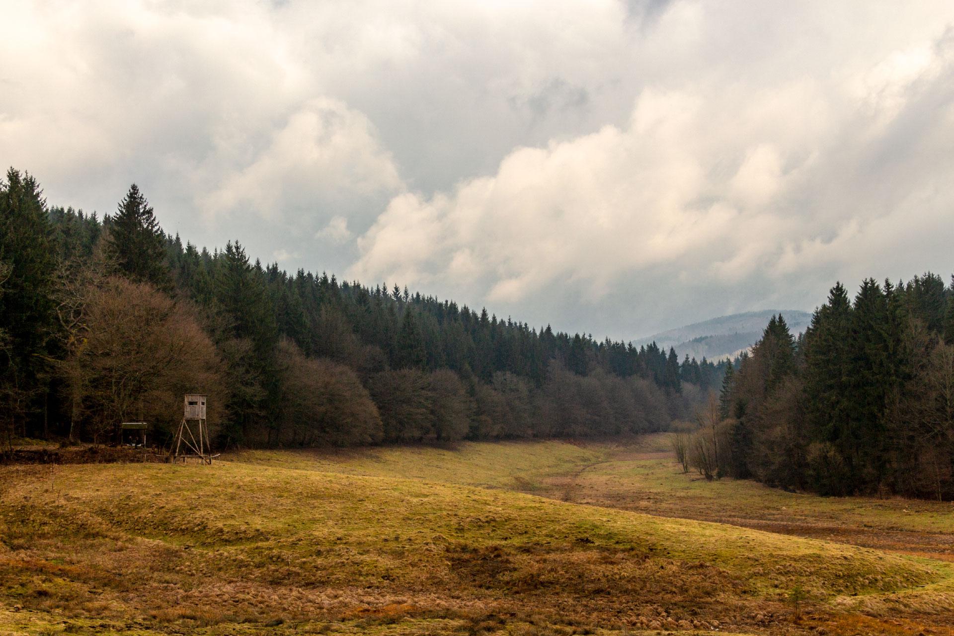 Auch das Tal des Breitenbachs gehört zum Biosphärenreservat Vessertal und steht dem Nachbarn in nichts nach.