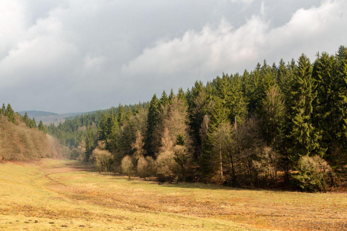 Im Tal des Breitenbach auf dem Weg nach Vesser kommt kurz auch mal die Sonne raus.
