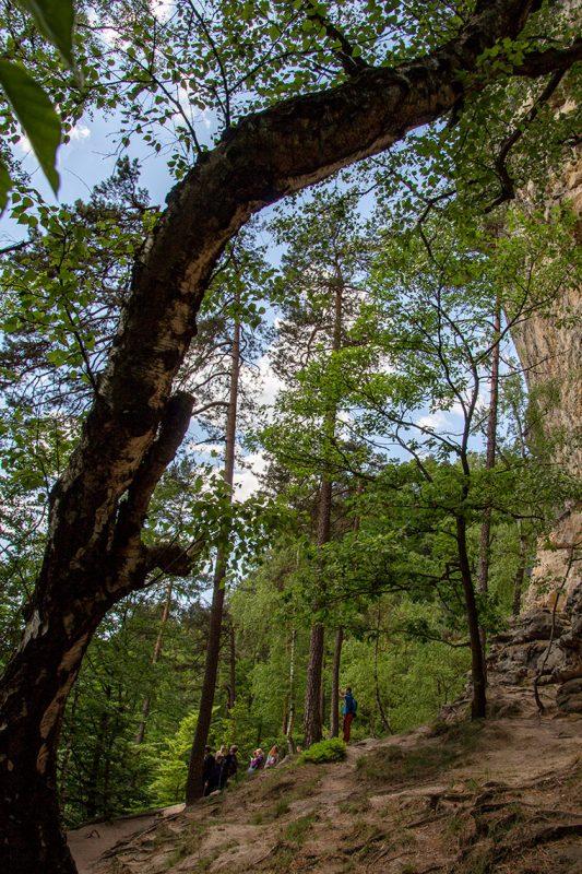 Immer an den Felsen entlang führt der wilde Wanderweg ganz idyllisch nach Mezni Louka.