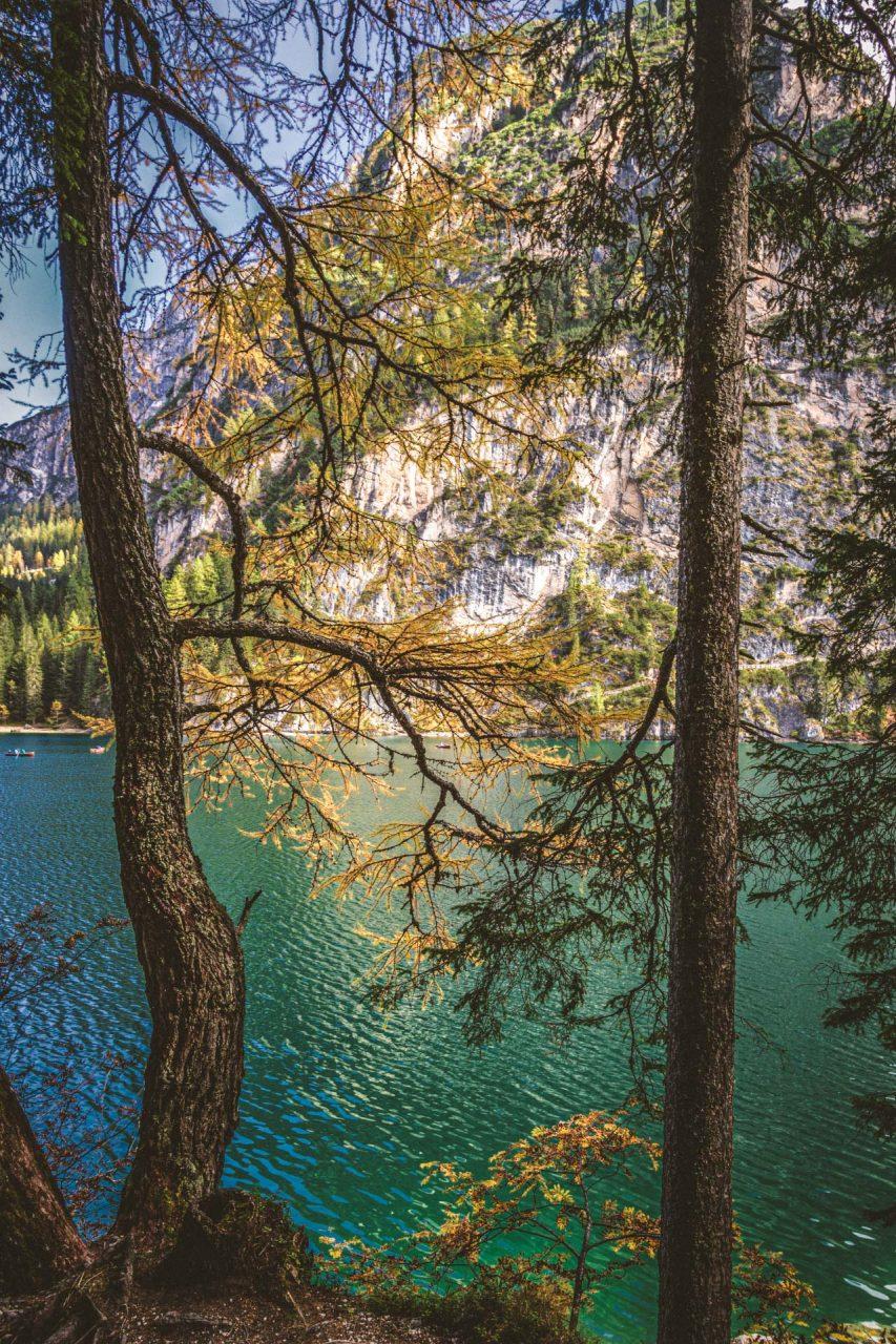 Fast mediterran schimmert der Bergsee durch die Bäume am Ufer