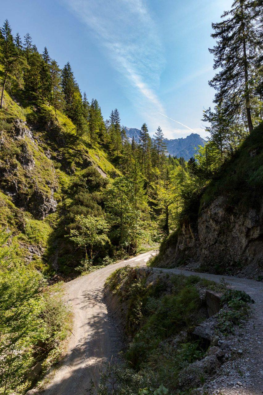 Hinab zur Weißbachschlucht in der es bei sommerlichen Temperaturen angenehm kühl ist.
