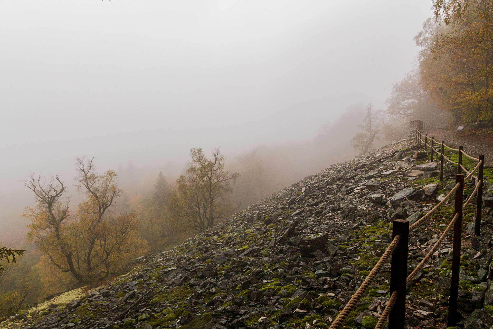 Oberhalb des Burrs entlang: der Saar-Hunsrück-Steig