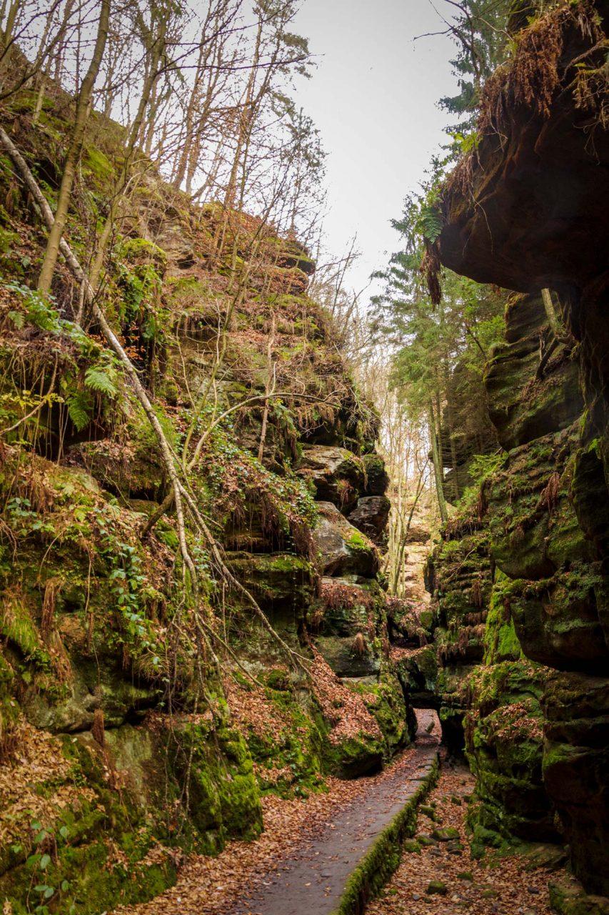 Das Felsentor im Uttewalder Grund, mehr Tür als Tor