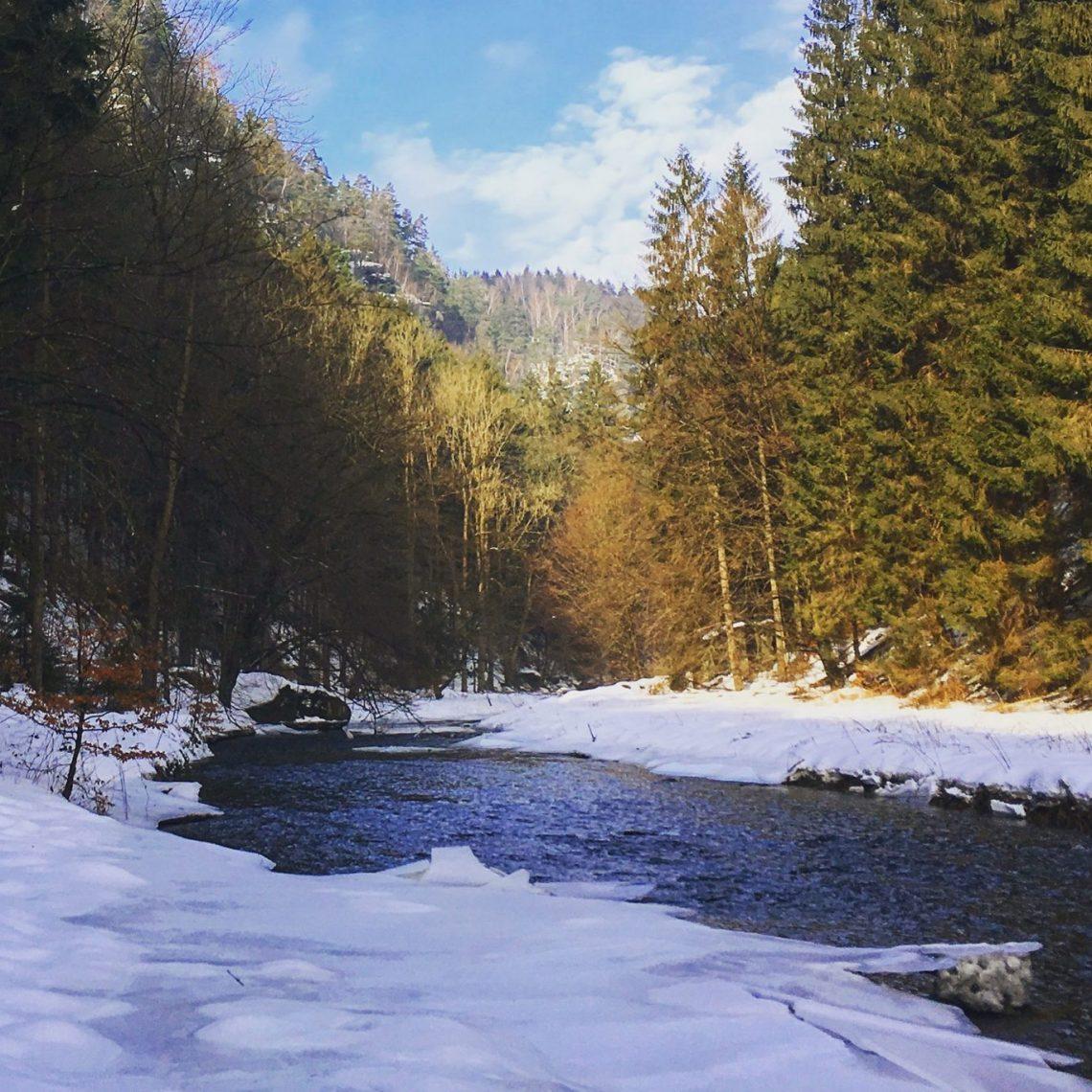 Polenztal im Winter.