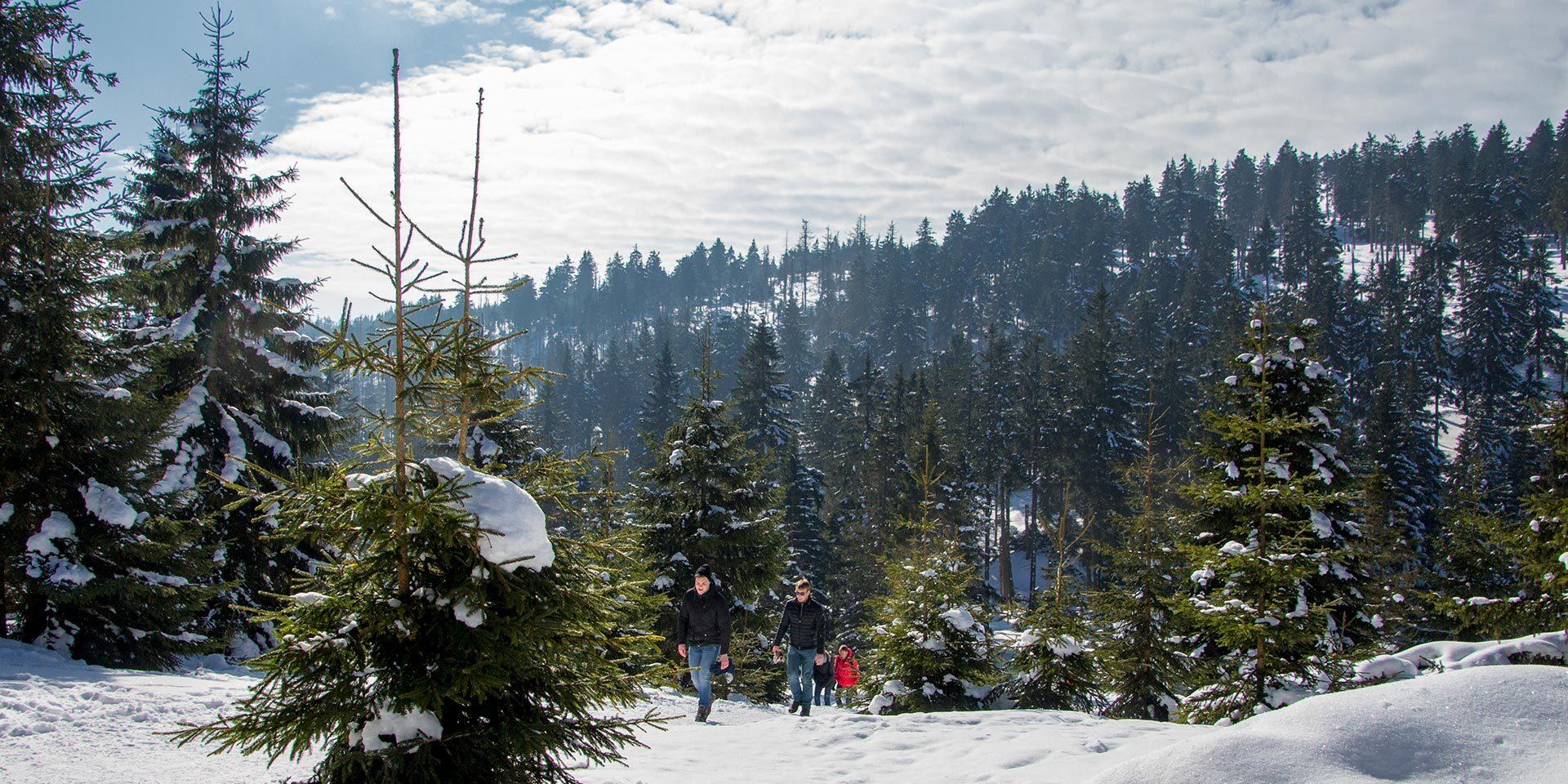 Der Aufstieg über den Eckerlochstieg ist auch im Winter eine schweißtreibende Angelegenheit.
