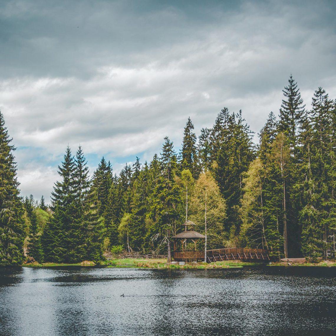 Rund um die Kladská-Seen führt ein Lehrpfad, der Auskunft über die Artenvielfalt der angrenzenden Moore gibt