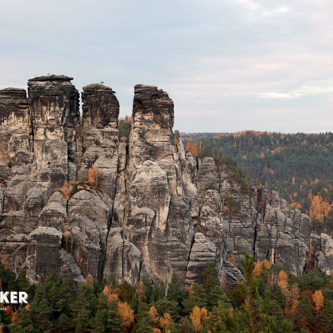 Als ganz besondere Felsformation präsentiert sich von der Bastei aus die Steingruppe der Kleinen Gans